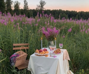 basket, drink, and love image