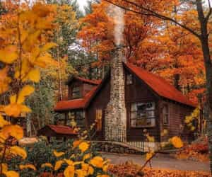 autumn, cabin, and house image