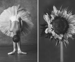 art, ballerinas, and beautiful image