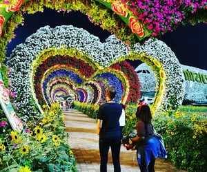 Dubai, flowers, and love image
