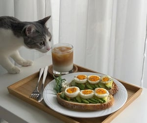 aesthetic, avocado, and breakfast image