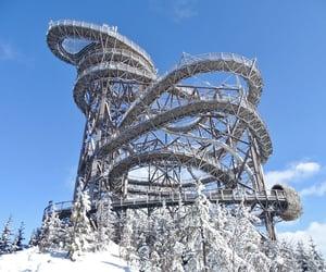 winter, schnee, and latticeclimbing image