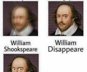 funny, lol, and humor image