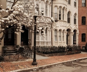 aesthetic and boston image