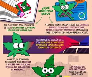 mexico, pictoline, and scjn image