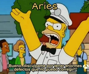 aries, memes, and los simpsons image