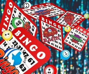 bingo bryan image