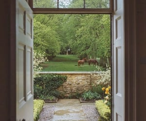 horse, garden, and nature image
