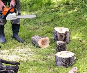 stump grinding concord image