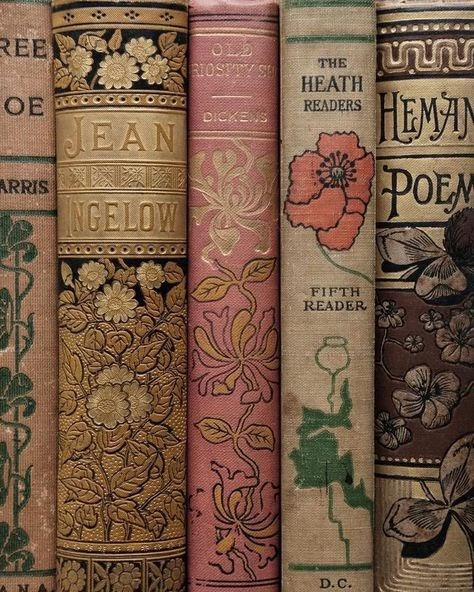 aesthetic, article, and books image