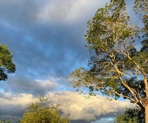 beautiful, free, and landscape image