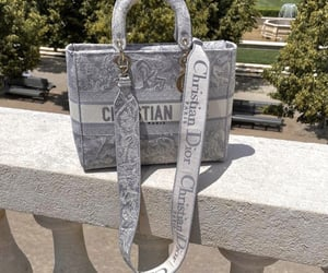 accessories, bag, and Christian Dior image