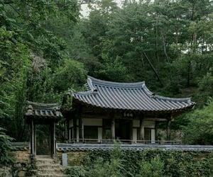 greenery, nature, and south korea image