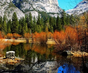 autumn, beautiful places, and bloggers image