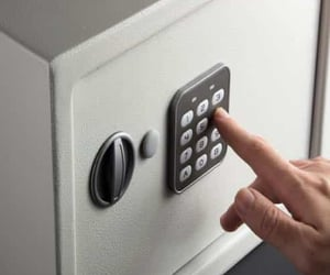 safes and touchless biometrics image