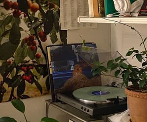 vinyl, aesthetic, and music image