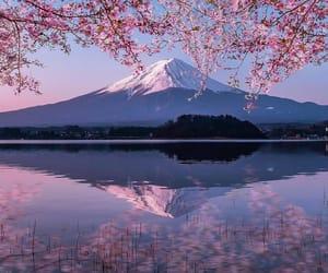 japan, mount fuji, and nature image