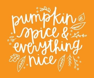 autumn, pumpkin spice, and fall image