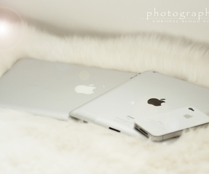 apple, collection, and inspiration image