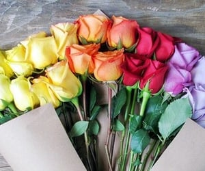 flowers, roses, and bouquet image