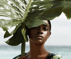 beauty, color, and editorial image