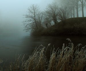 fog and lake image