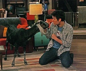 how i met your mother, tv, and ted mosby image