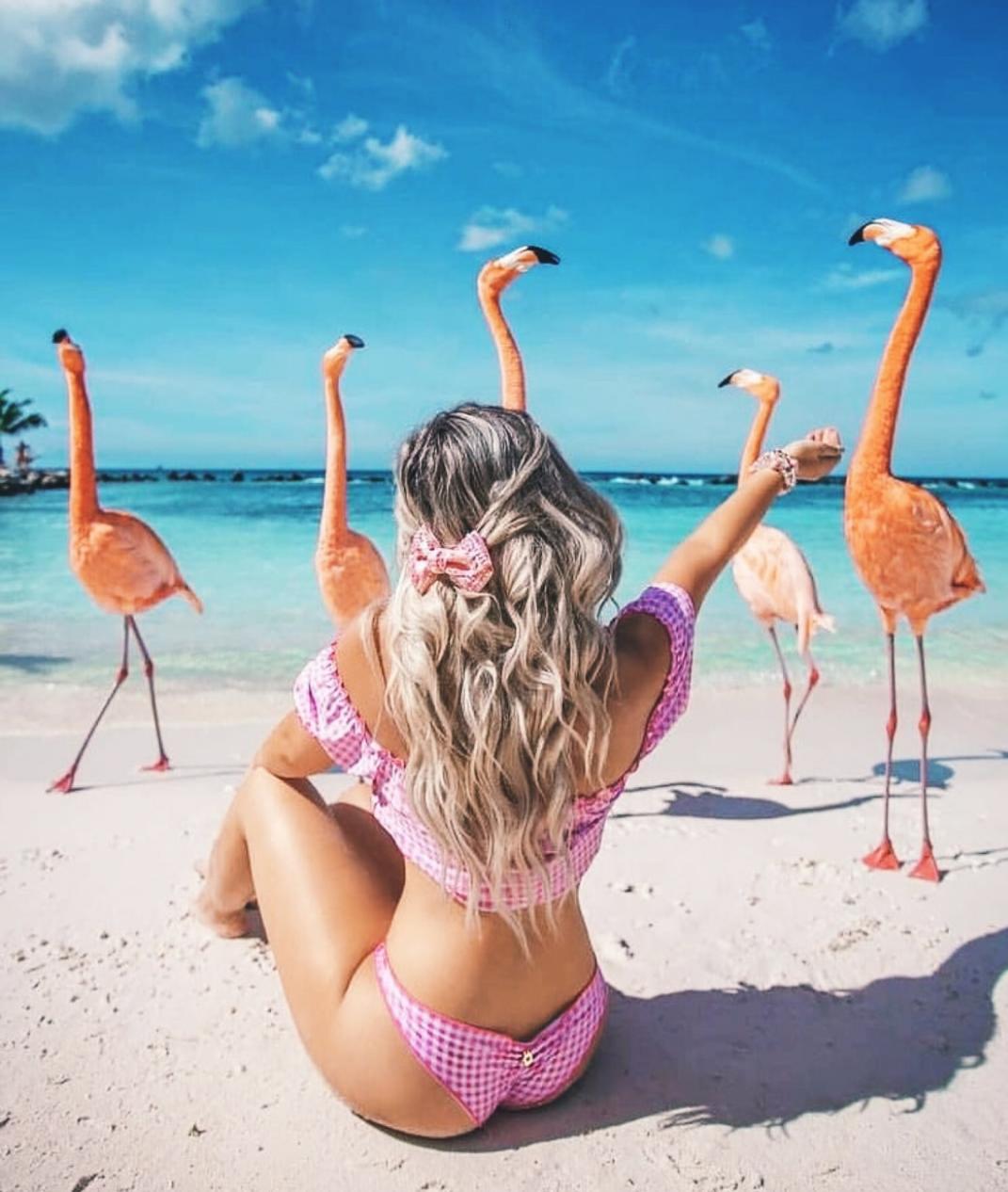 summer, beach, and flamingo image