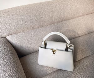 Louis Vuitton, LV, and louis vuitton bag image