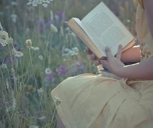 books, reading, and summer reading image