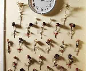aesthetic, flowers, and time image