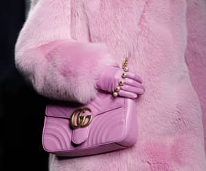 gucci, rtw, and fw 2016 image