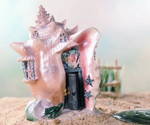 conch, dollhouse, and fae image