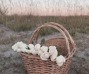aesthetic, angelic, and basket image