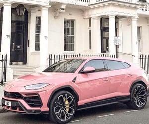 Lamborghini, pink, and urus image