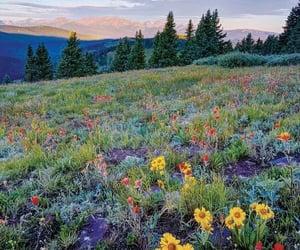 colorado, landscape, and nature image