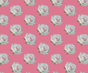 flowers, pattern, and wallpapers image