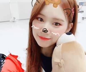 bear, girls, and korean image