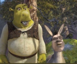 confused, donkey, and funny image