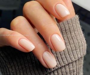 nails, manicure, and nail polish image