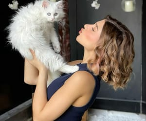 beauty, girls, and cat image