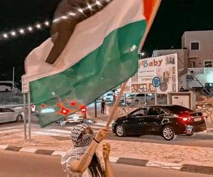 freedom, palestine, and فلسطين image