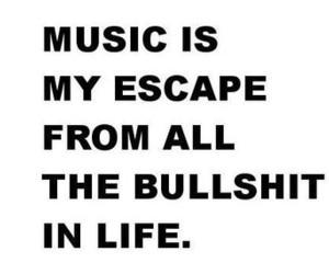 music, life, and bullshit image