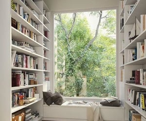 books, great view, and calming image
