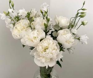 bouquet, flora, and floral image