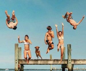 dive, jump, and swim image