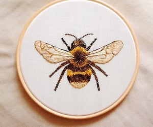 bee, aesthetic, and tumblr image