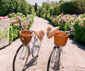 bicycle and spring image