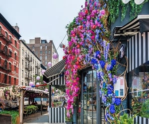 beautiful, buildings, and flowers image