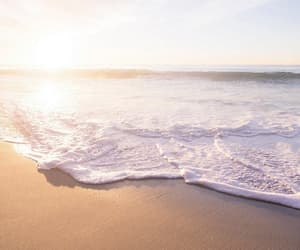 beach, scenery, and water image